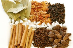 Digest This: Agni and Ayurvedic Spices