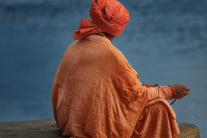 Sadhu Meditation Bird